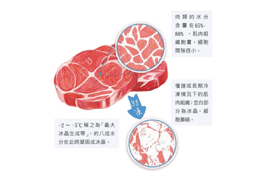 解凍 冷凍 肉