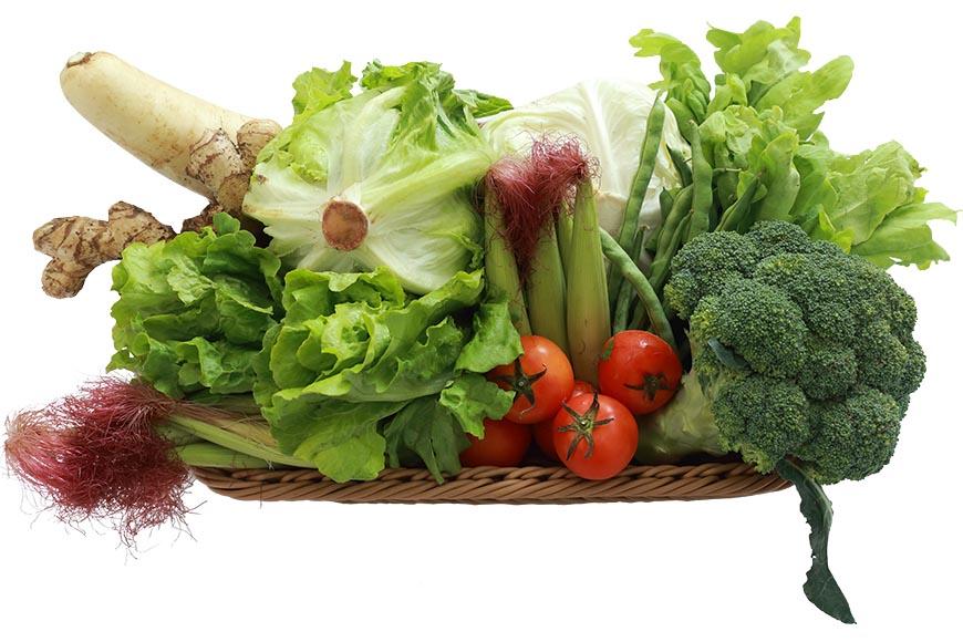 火鍋食材搭配推薦:牛奶鍋味道濃郁,加入季節蔬菜,不僅色彩繽紛賞心悅目,也增加味覺的層次感。