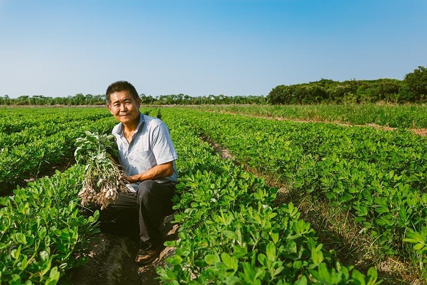 面對田間被蟲吃掉的作物產量損失,合作社資深農友王建朝笑笑地說:「蟲吃剩下的,才是我們人吃的!」