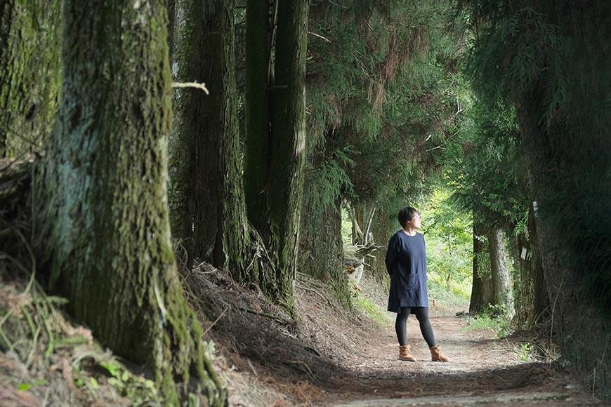 尚蘋果園,尚品果園,林浴沂,採蘋果的遊客順遊步道,遠眺美景早已流連忘返。
