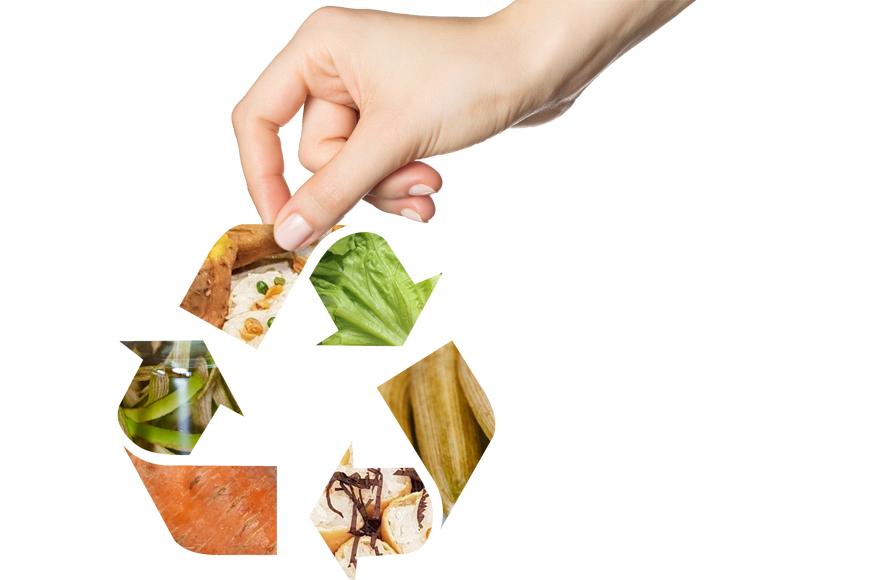 「一物全食」也是全食物飲食的重要概念。