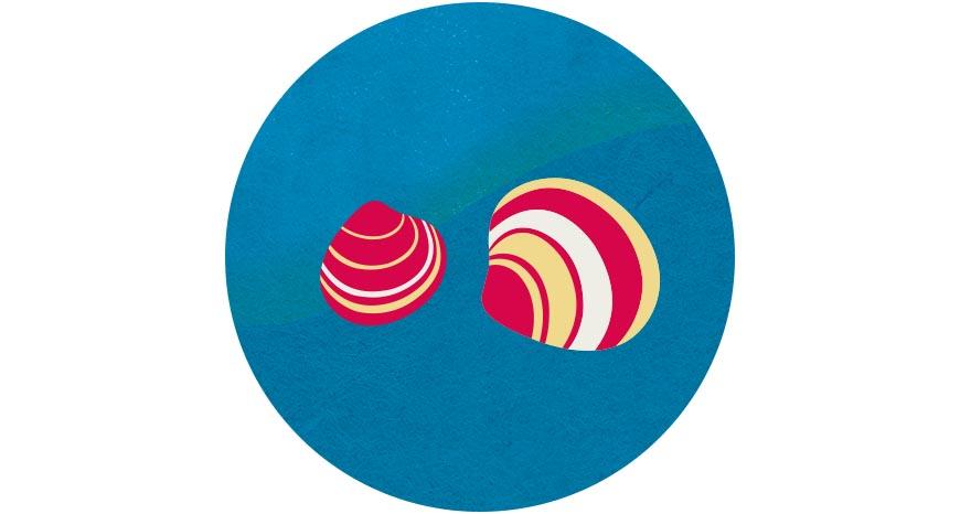 文蛤  文蛤是台灣主要的養殖貝類,除能淨化水質,過程中還可將水中的二氧化碳轉化成碳酸鈣的外殼,具固碳、減緩溫室效應作用。而以生態混養的文蛤,透過魚蝦間的各司其職,達到生態與水質平衡,不需施用藥物,也能健康成長。