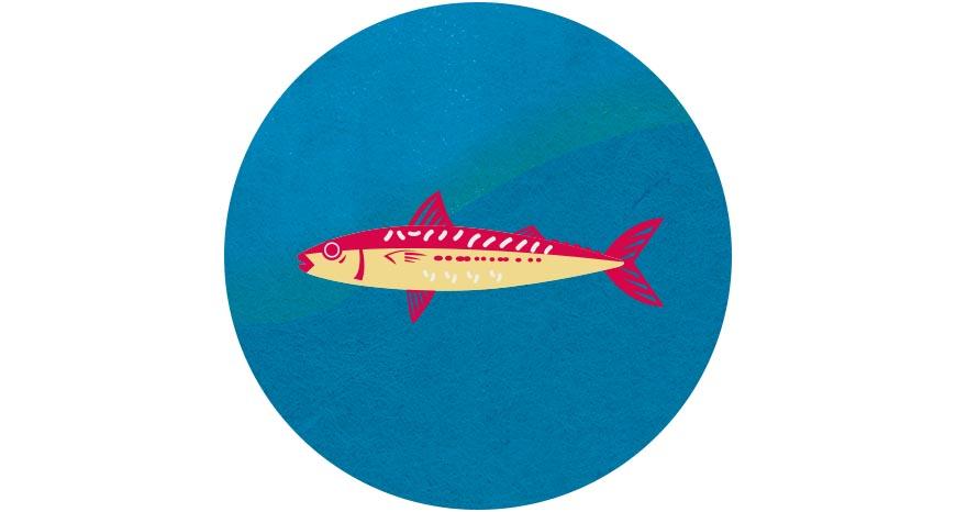 虱目魚  比起肉食性魚種,大量養殖恐造成海洋生態的壓力,可多食用吃素的虱目魚。挑選時,以減少用藥、採低密度或混養方式為優先,其也有助維持水質穩定,讓池水循環使用。可全魚利用的虱目魚,魚肚、魚腸都是美味佳餚!