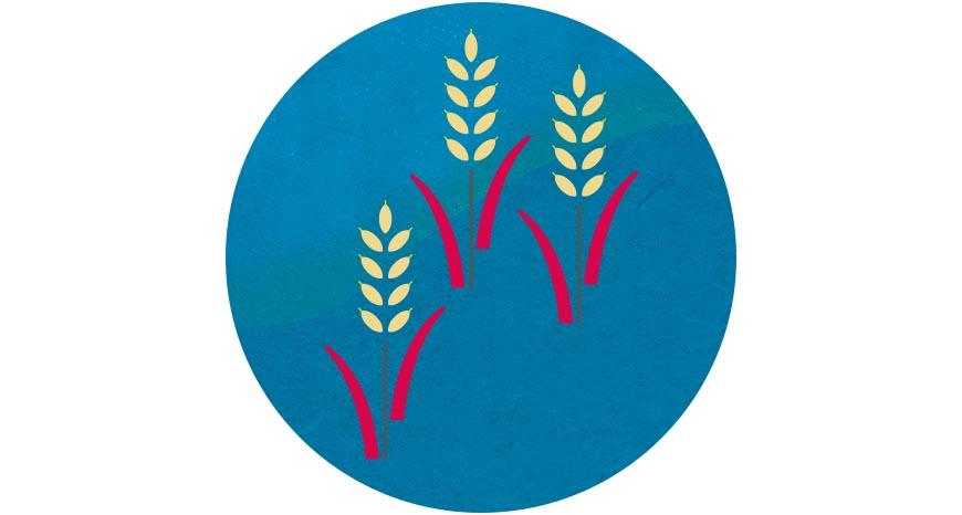 稻米  為台灣閩南移民最主要的糧食與經濟來源,隨著飲食西化與開放自由貿易,不僅國內糧食自給率急速下降,實踐友善耕作的稻農亦難與進口廉價稻麥競爭。過年時,年夜餐桌擺上一鍋友善環境的台灣米,也是對土地的祝福。