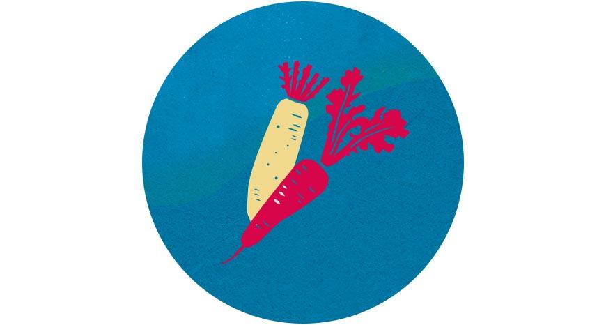蘿蔔  冬天盛產的根莖類蔬菜最為甜美,其中,白蘿蔔俗稱「菜頭」,過年時總要吃它,象徵新的一年好彩頭。富含維生素與膳食纖維的紅、白蘿蔔,與肉品一同燉煮,更添料理的鮮甜滋味,在大魚大肉的餐桌上,別忘了多食蔬菜保健康!