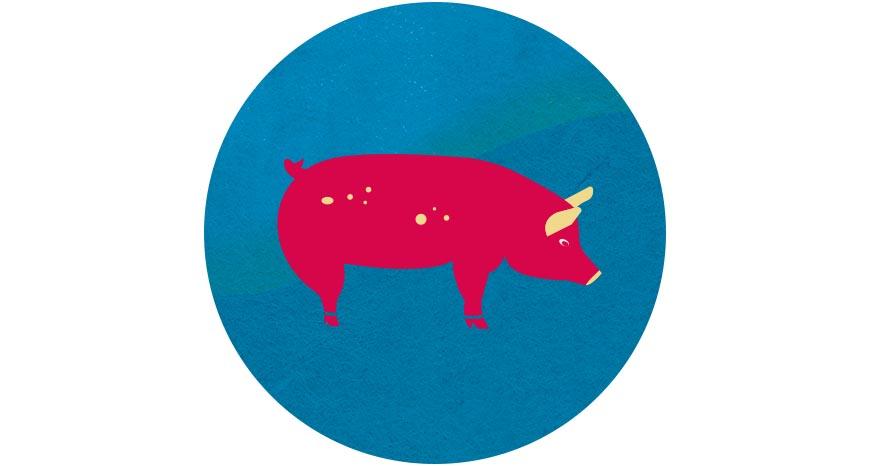 豬肉  圍爐時的滷豬腳、原民慶典的烤山豬,豬肉一向都是傳統節慶的主角,自1997年爆發口蹄疫後,台灣業者不斷精進疾病管理、改善飼養環境,甚至以沼氣發電達到永續循環經濟。如此用心照顧的本土豬肉,品質與口感絕對讓人大快朵頤。