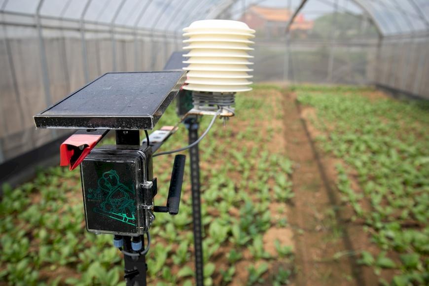 阿龜微氣候感測裝置,筠水觀農園