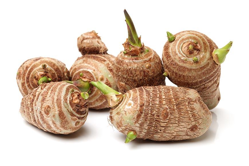 芋頭 芋頭採收前就有長出枝葉,因此即使發芽也不會產生毒素,可以吃。  芋頭的保存方式:將芋頭表面沙土清洗乾淨後晾乾,接著再削皮切塊、切絲、切丁等,並以保鮮袋包裝再放入冷凍,約可保存1年左右。