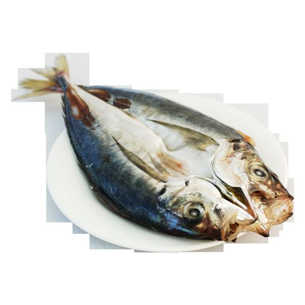 26-背開竹筴魚
