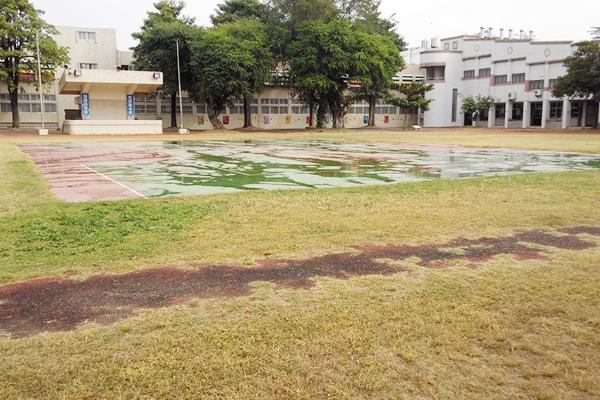 下雨過後草地與水泥地比較-600x400